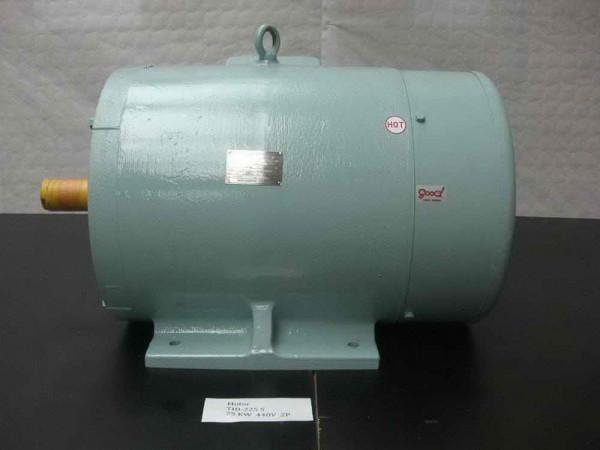 Taiyo-Electric-TID-225S-E-Motor-TID-225-S_95012568_0